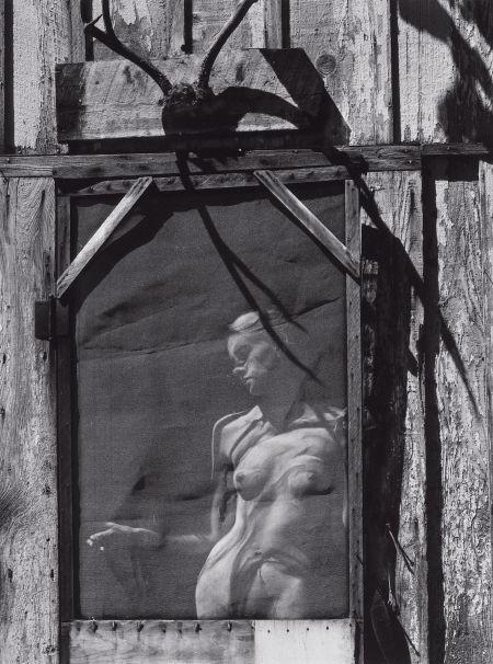 Wyn Bullock nude 1963